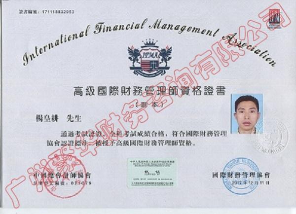 国际财务中文版